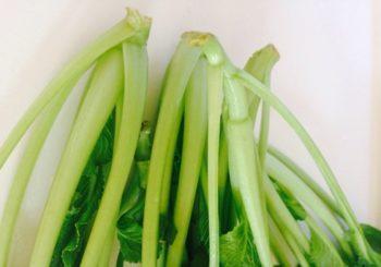小松菜の茎と根元