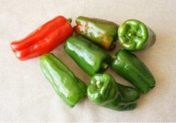 緑ピーマンと赤ピーマン